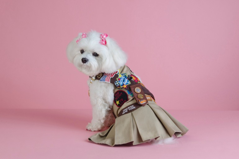 Bella Mia Pupscout uniform