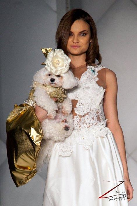 Anthony Rubio Fashion Week Brooklyn 2014 Pet Fashion Show 1