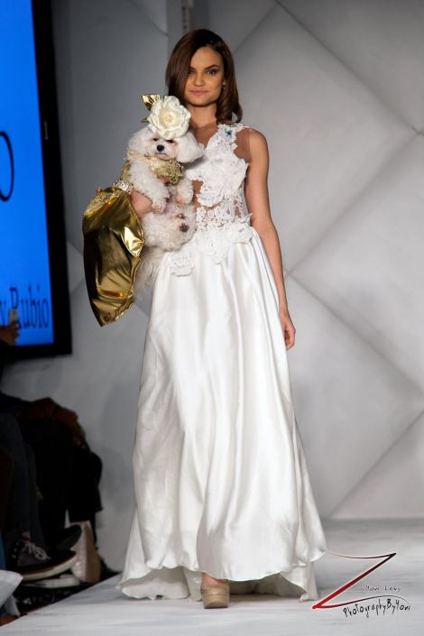 Anthony Rubio Fashion Week Brooklyn 2014 Pet Fashion Show 3