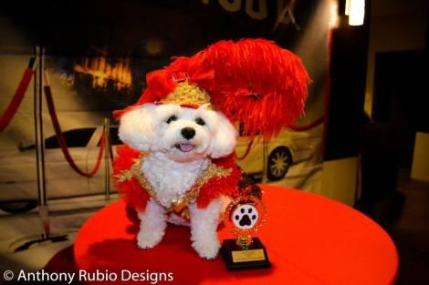 Bella m Mia and her award