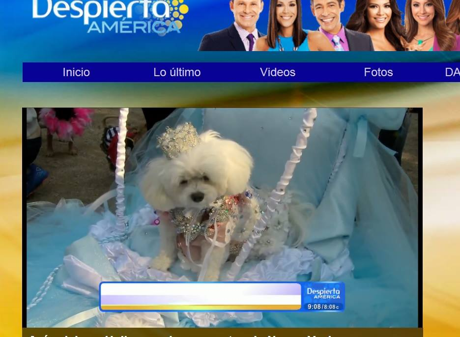 Bella Mia is featured on Spanish Television Despierta America on Univision Network