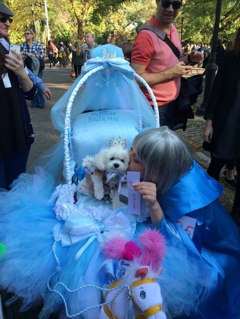 Cinderella Bella Mia wins 3rd place Tompkins Square Park Halloween Dog Parade ~ Hugs from Princess Bella Mia and Mommy xoxo Wendy Agramonte Foskey and Anthony Rubio Designs ~ Thank you both we had a wonderful day  ! — at Tompkins Square Halloween Dog Parade.